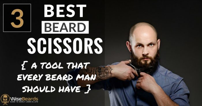 Best Beard Scissors