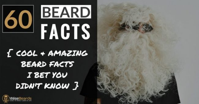 Enjoyable 60 Cool Beard Facts Cool Incredible Things You Didnt Know Natural Hairstyles Runnerswayorg