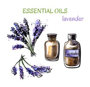 lavender oil beard